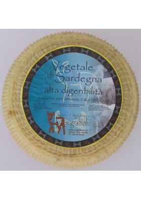 Su grabiolu Vegetale cheese - Pecorino high digestibility