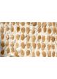 Stecca torrone di Tonara - Dolce tipico sardo