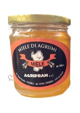 Miele sardo di agrumi - Agripan Nuoro