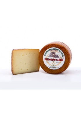 Sheep Sardinian cheese - pecorino Pastore Sardo CAO