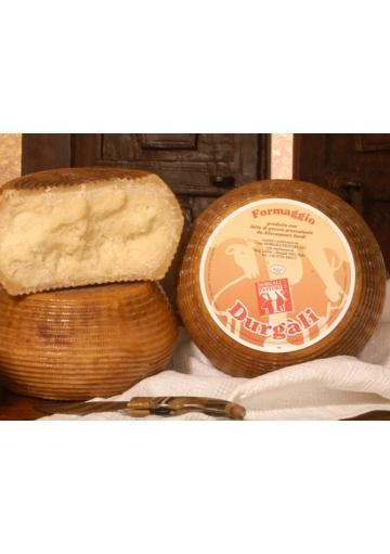 Pecorino seasoned sheep cheese