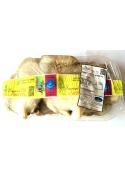 Pleurotus ostreatus mushrooms - Consorzio Ori di Sardegna