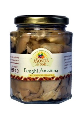Funghi antunna-280 gr.